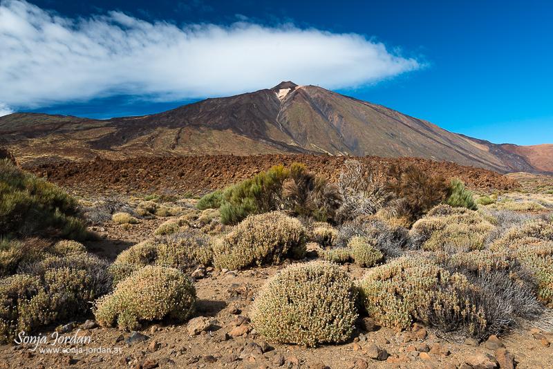 Roques de Garcia, Nationalpark Teide, Kanarische Inseln, Teneriffa, Spanien