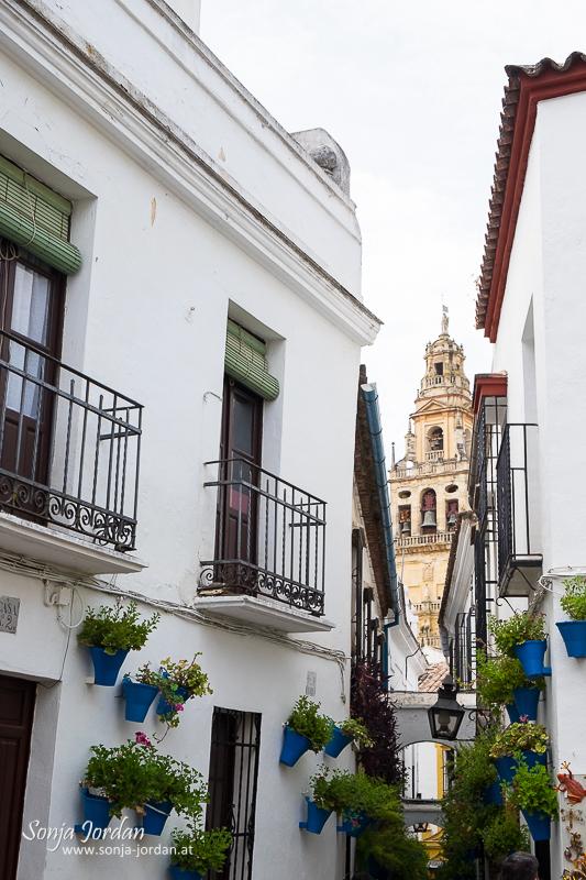 Alley Calle de las Flores, Cordoba, Andalusia, Spain