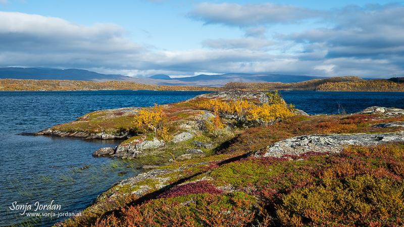 See Paktajaure, Herbstliche Landschaft, Norrbotten, Norrbottens län, Laponia, Lappland, Schweden