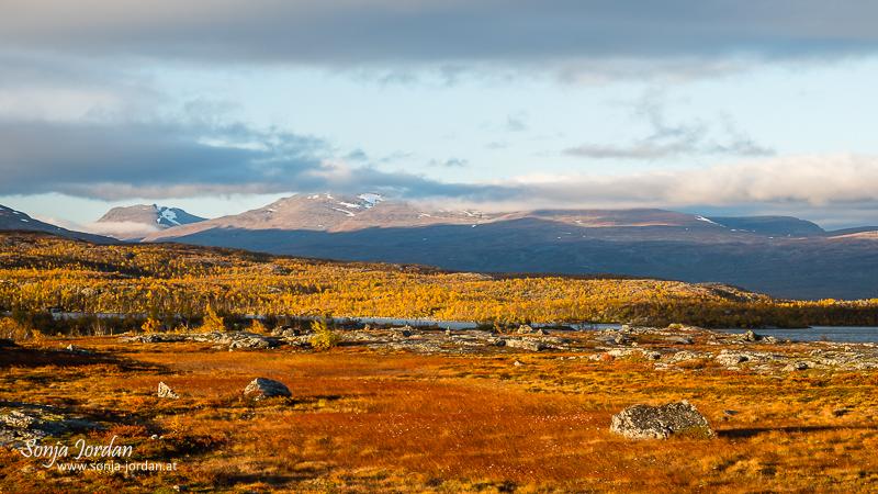 Herbstliche Landschaft, Norrbotten, Norrbottens län, Laponia, Lappland, Schweden