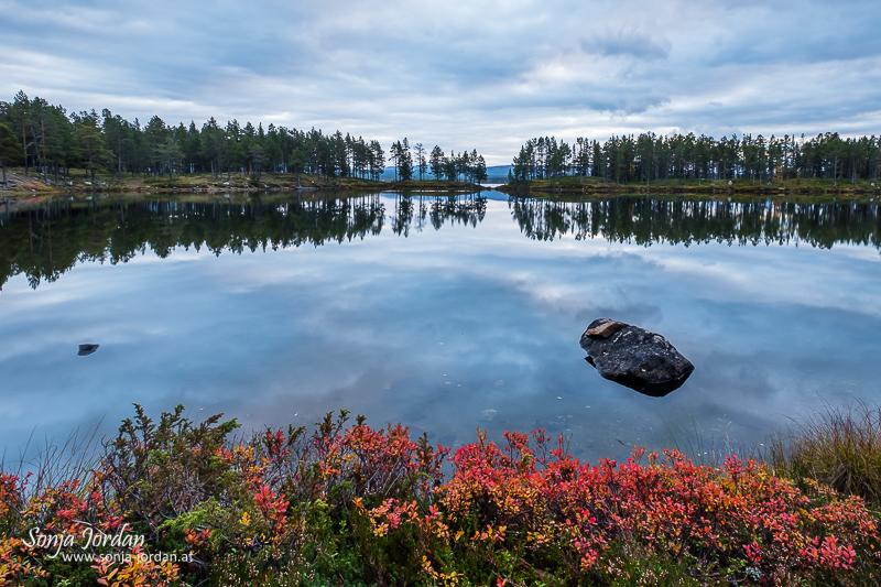 Abendstimmung, Spiegelung am See Saggat, Norrbotten, Norrbottens län, Laponia, Lappland, Schweden