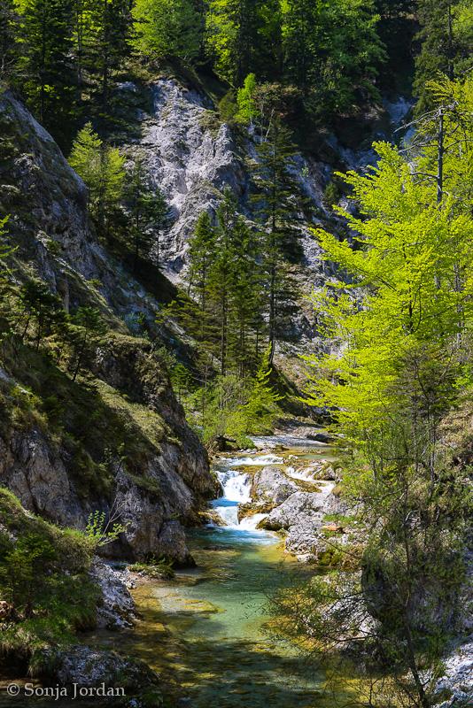 Unterwegs im Naturpark Ötscher-Tormäuer
