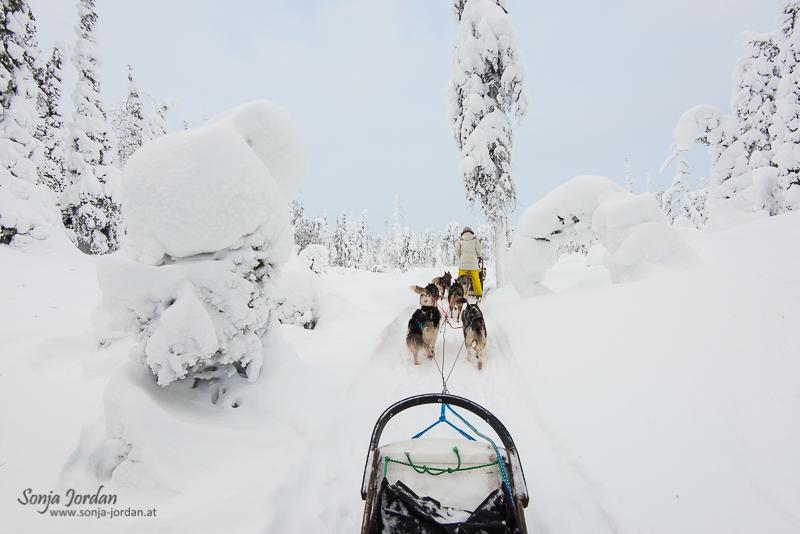 Abenteuer in Finnland
