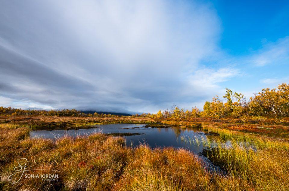 Herbst in Nordschweden