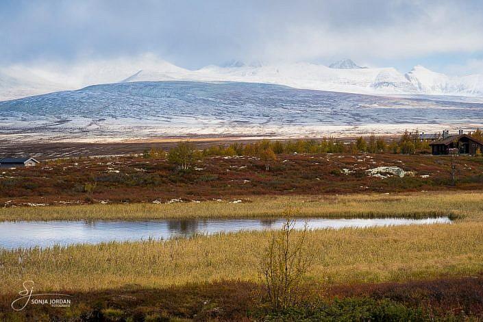 Dovrefjell-Sunndalsfjella-Nationalpark