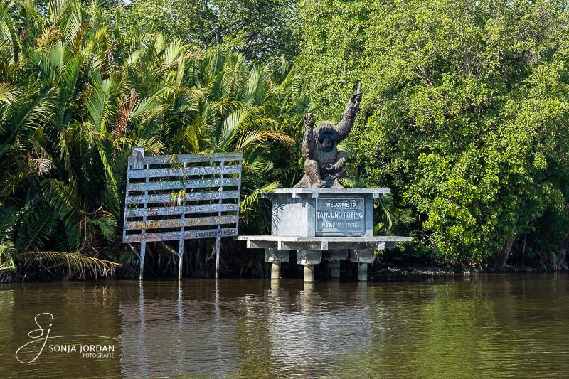 Einfahrt in den Tanjung Puting National Park