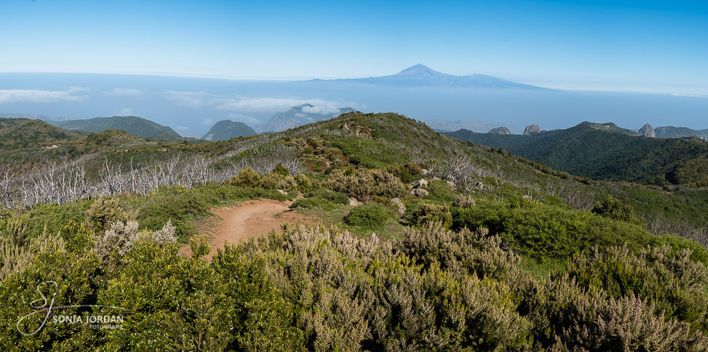 Blick nach Teneriffa vom Alto de Garajonay, dem höchsten Punkt der Insel.