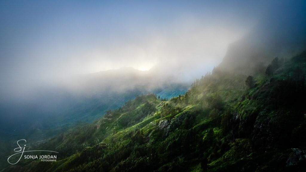 Es ergeben sich immer wieder interessante Lichtstimmungen wenn sich der Nebel ein Stück lichtet.
