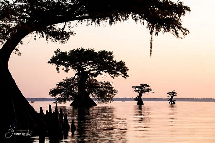 Atchafalaya Basin, Louisiana
