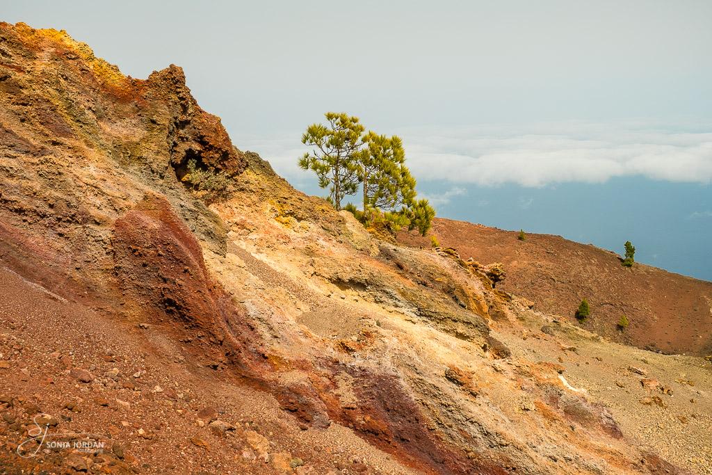 Vulkan Martín